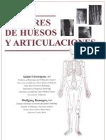 Green Span- Tumores de Huesos Articulaciones