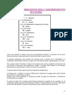 Correzione Fondo - Biagio Castronovo.pdf