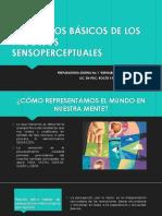 Procesos Sensoperceptuales