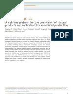 Una Plataforma Sin Células Para La Prenilación de Productos Naturales y Su Aplicación a La Producción de Cannabinoides.