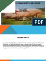 Exposicionsistemadigestivodelcerdo1 150823020931 Lva1 App6892