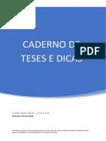 Caderno de Teses e Dicas - XXVIII