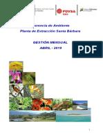 Informe de Gestión PESB ABRIL- 2019 PESB.doc