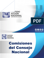 Presentacion Comisiones del Consejo Nacional