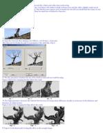 Efectos Con Fotos GIs 1 SCRIBD