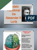 LURIA SISTEMAS_FUNCIONALES