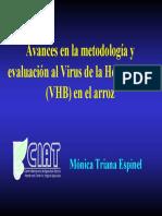 EVAUACION DE VIRUS DE HOJA BLANCA.pdf