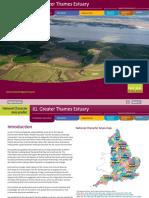81 Greater Thames Estuary.pdf