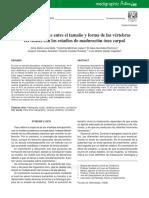 Relacion Madruacion Vertebral y Rx Carpal