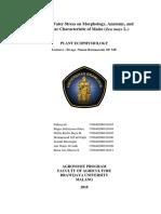 laporan ekofis.docx