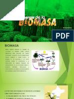 Energia de La Biomasa-electivo