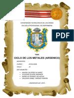 CICLO DE LOS METALES - ARSENICO.docx
