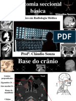 LIVRO - Anatomia Seccional Básica