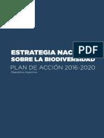Informe Argentina 2017