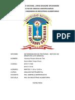 INFORME-1-INSTRUMENTAL.docx