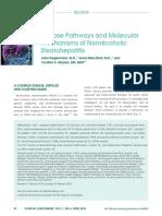 PATHOPHYSIOLOGY NASH INDUCED LIVER FIBROSIS.pdf