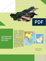 Deforestación Isla de Borneo