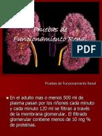 pruebasdefuncionrenal1-110618132901-phpapp01.pdf