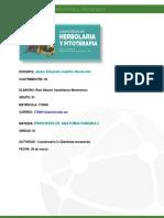 Raul Castellanos Cuestionario Glandulas