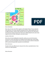 PLANT CELL.docx