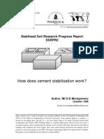 ssrpr2.pdf