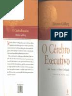 O cérebro executivo - completo.pdf