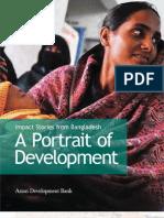 A Portrait of Development