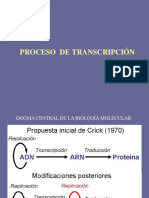 Transcripcion CBC