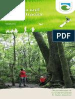 pirongiabrochure (1).pdf