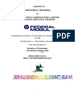 FEDERAL MOGUL GROUP (1).docx