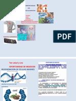 Volante Guardia Civil PDF