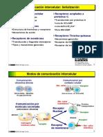 biosenalizacion-2010.pdf