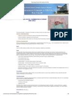 Neurologic Exam of the Infant and Child