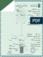 DELPHI 294333449 DDNX399 Manual de Servicio EUI Serie E3 PDF