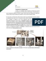 Rochas igneas, metamorficas e sedimentares.pdf
