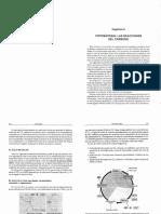 Fotosintesis. Reacciones de Carbono