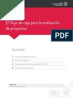 ESCENARIO 7  flujo de caja.pdf