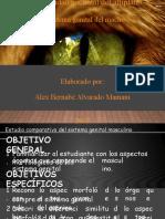 Sitema Reprodutor macho y hembra.pdf