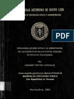 17563.pdf