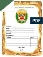 Monografia de Garantias Constitucionales