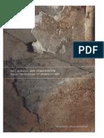 Art_Biology_and_Conservation_Biodeterioration_of_Works_of_Art.pdf