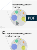 Funcionamento global do cérebro