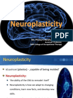 neuroplasticityfinal-131114122643-phpapp01