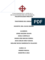 Psicopatologia Practica Lenguaje Final