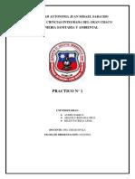 proceso[1].docx