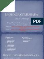 294113462-MIOLOGIA-COMPARADA-1.pdf