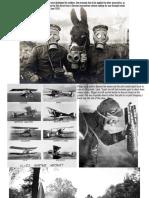 World War One Photographs Gallery Walk (3)