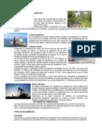 Actividades Primarias de Guatemala