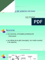 2. Celulas Del Sistema Nervioso 2018 (2)