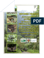 Informe_Tecnico San Pablo